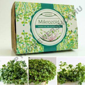 fodros kel mix ültető csomag